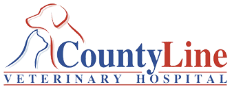 County Line Veterinary Hospital